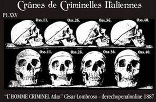Lombroso skulls